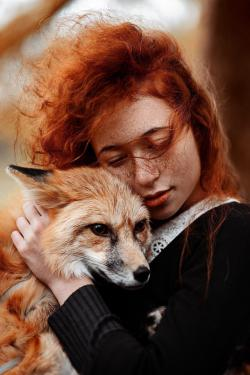 crezy-fox