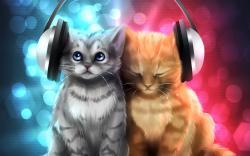 kittycat122