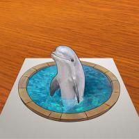 Фотография 3D рисунок дельфина в бассейне