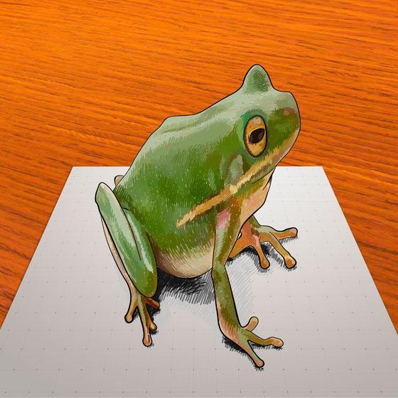 Рисуем лягушку в 3D на бумаге шаг за шагом