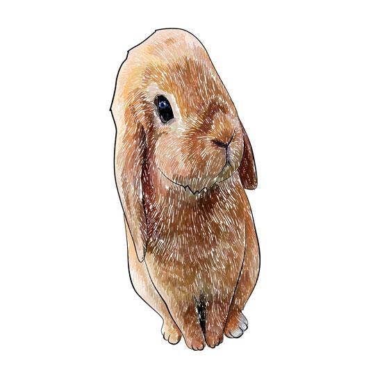 Как научиться рисовать 3D кролика  на бумаге