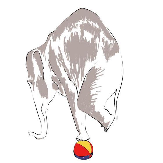 Как нарисовать 3Д слона на мяче на бумаге поэтапно