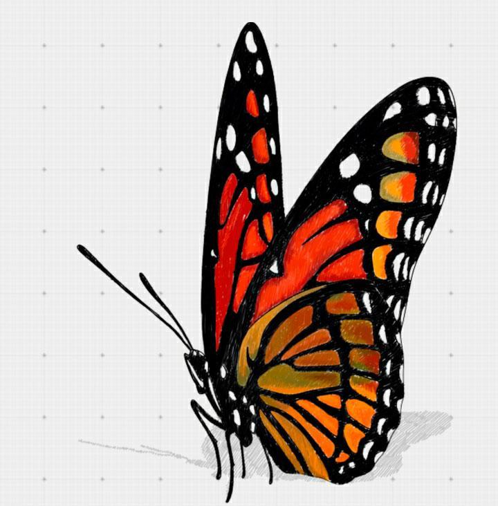 Рисуем бабочку в 3D на бумаге