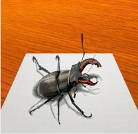 Фото жука-оленя в 3D