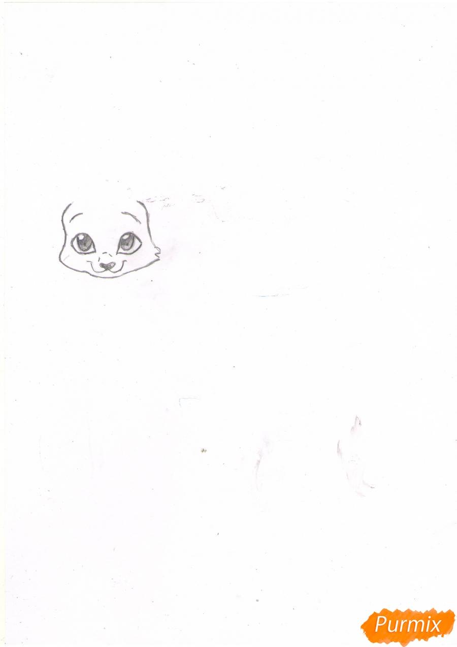 Рисуем аниме кошку цветными карандашами - шаг 1