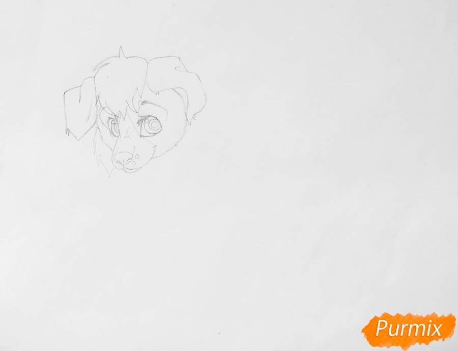 Рисуем аниме собаку Ella - шаг 3