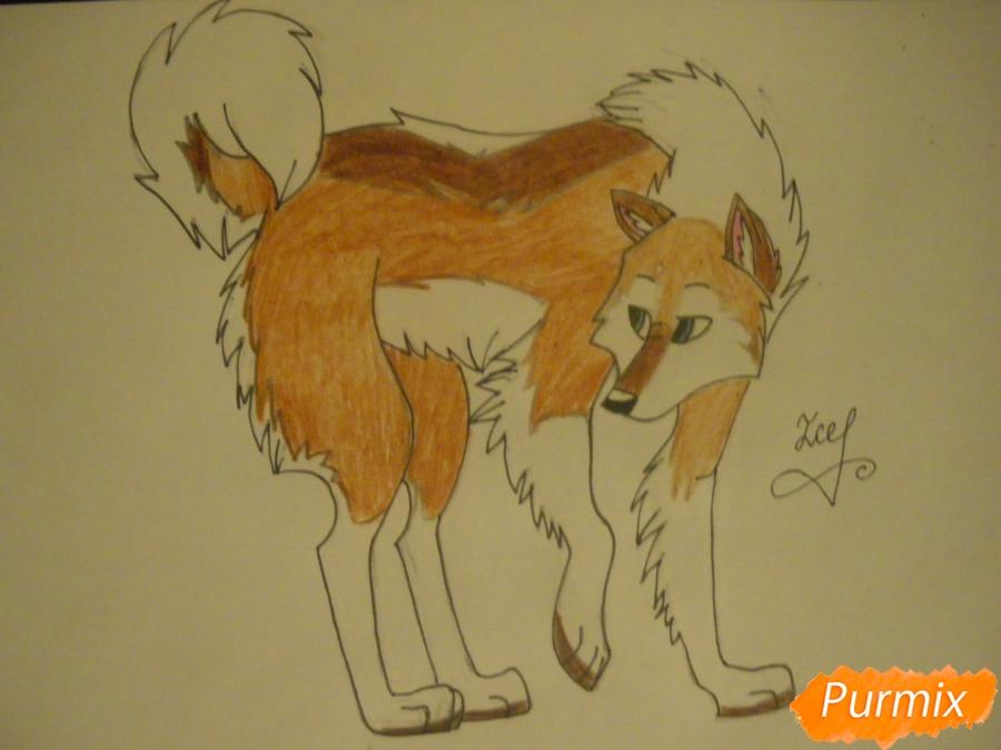 Рисуем аниме собаку с коричневым окрасом - шаг 10