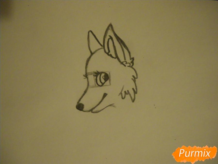 Рисуем аниме собаку с зелёными глазами - шаг 2
