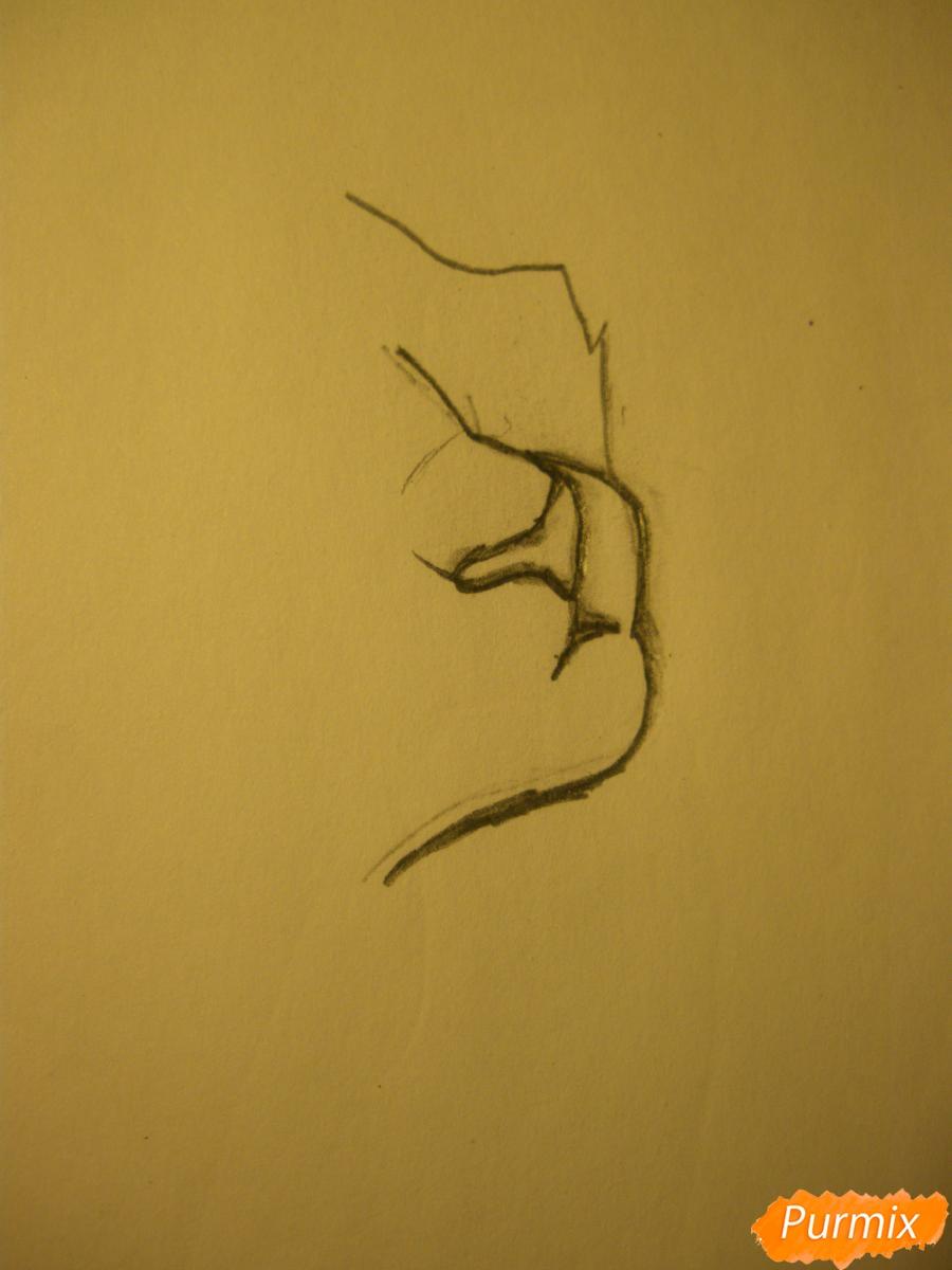 Рисуем аниме тигра - фото 1