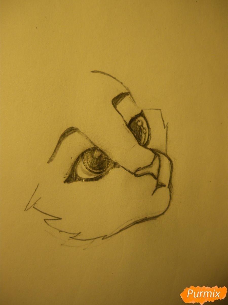 Рисуем аниме тигра - фото 2