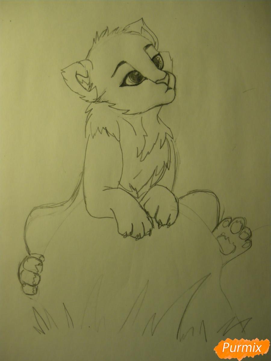 Рисуем аниме тигра - фото 6