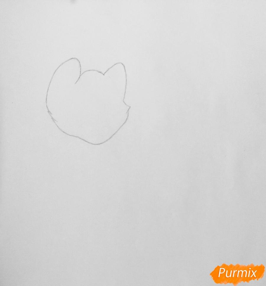 Рисуем  белую аниме тигрицу - фото 1
