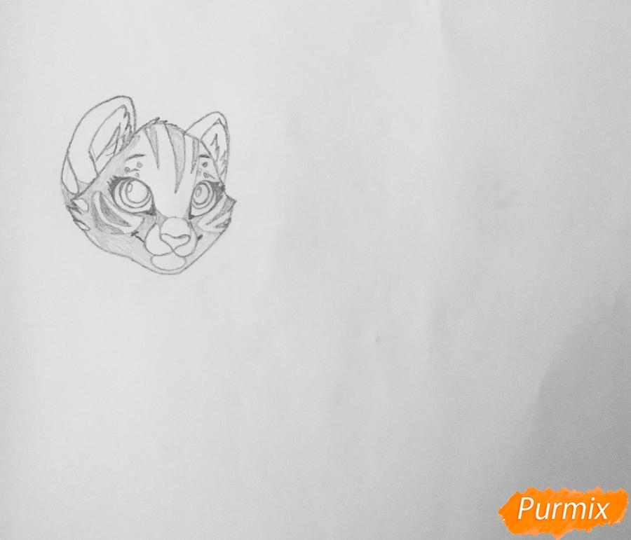 Рисуем  белую аниме тигрицу - фото 3