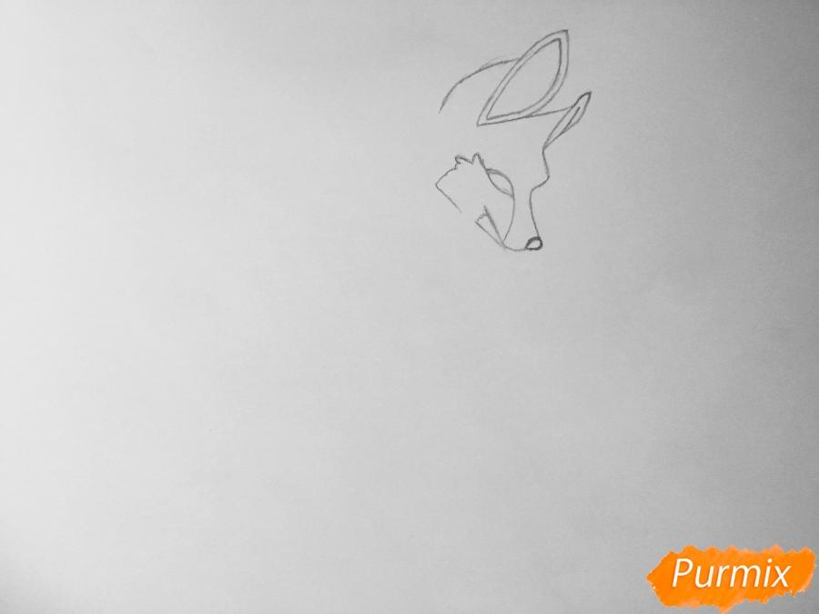 Рисуем аниме волчицу - шаг 2