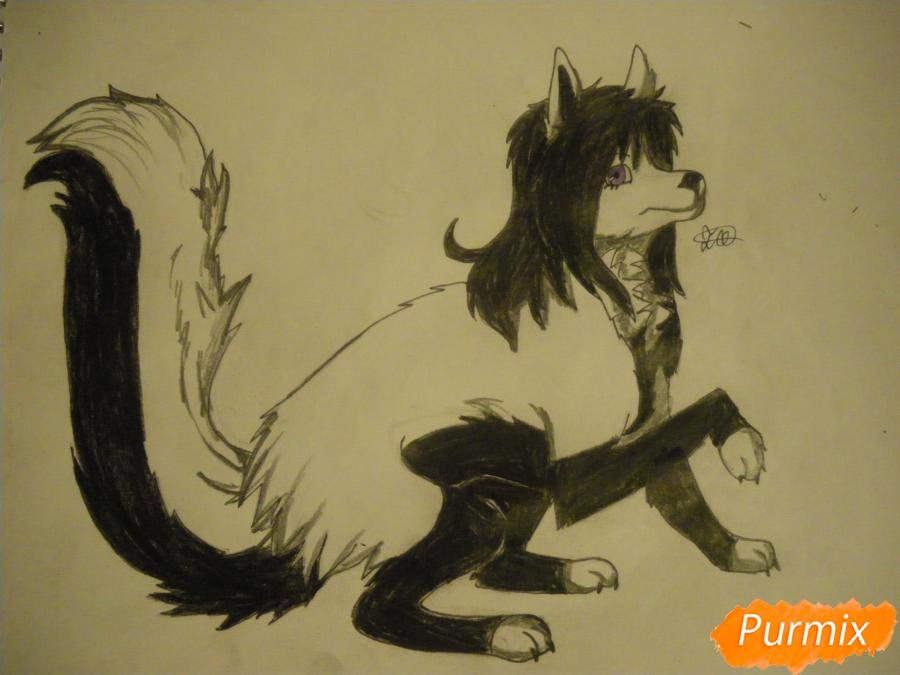 Рисуем чёрно-белую волчицу в стиле аниме - шаг 11