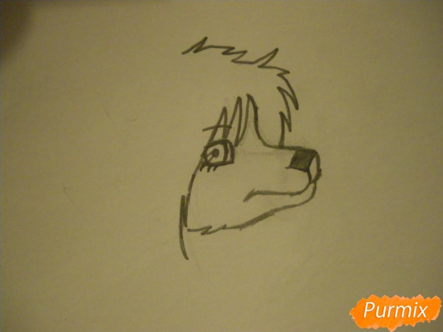 Рисуем чёрно-белую волчицу в стиле аниме - шаг 2