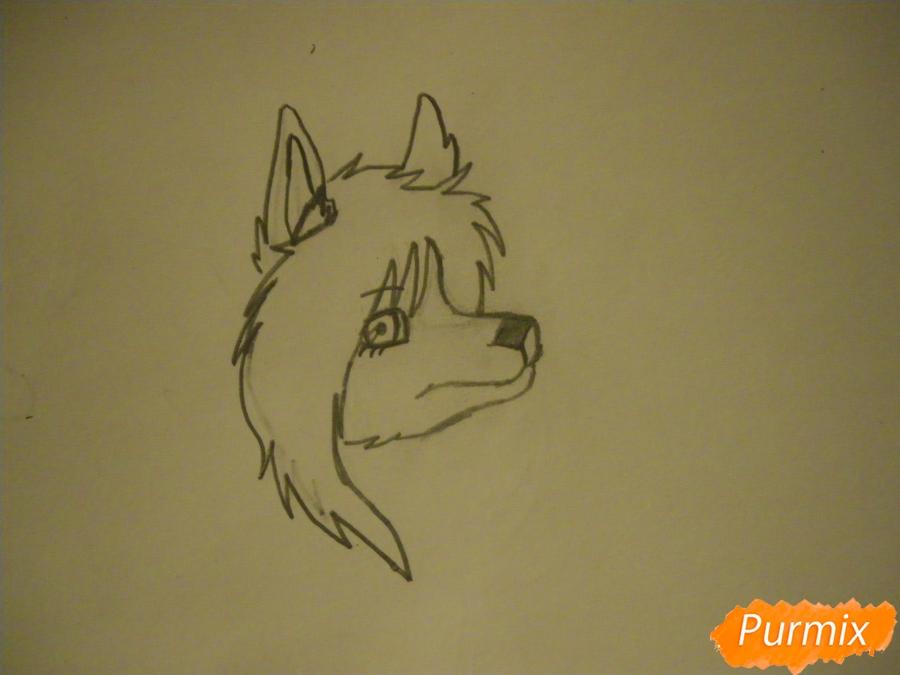 Рисуем чёрно-белую волчицу в стиле аниме - шаг 3