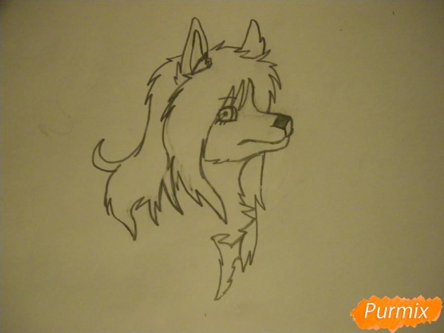 Рисуем чёрно-белую волчицу в стиле аниме - шаг 4