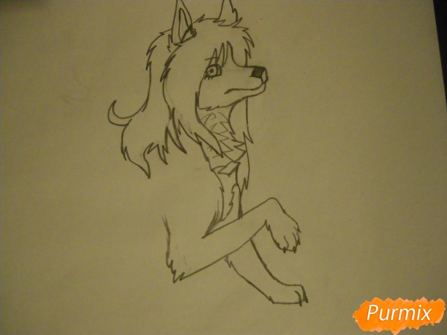 Рисуем чёрно-белую волчицу в стиле аниме - шаг 5