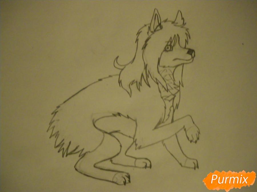 Рисуем чёрно-белую волчицу в стиле аниме - шаг 7