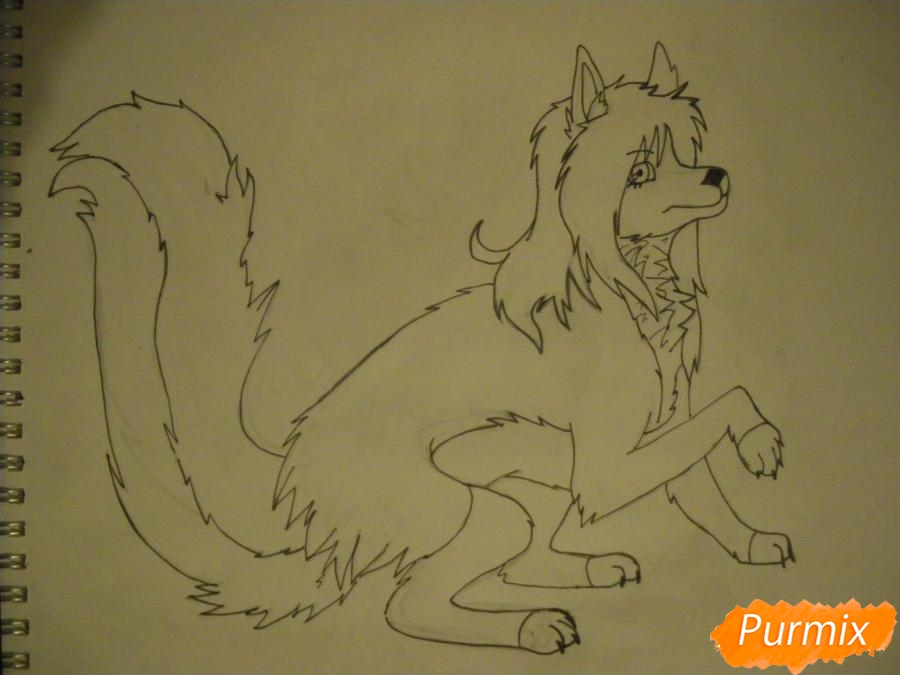 Рисуем чёрно-белую волчицу в стиле аниме - шаг 9