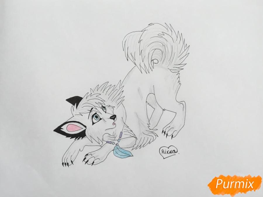 Рисуем голубоглазую белую аниме лайку с чёрными ушками - шаг 7
