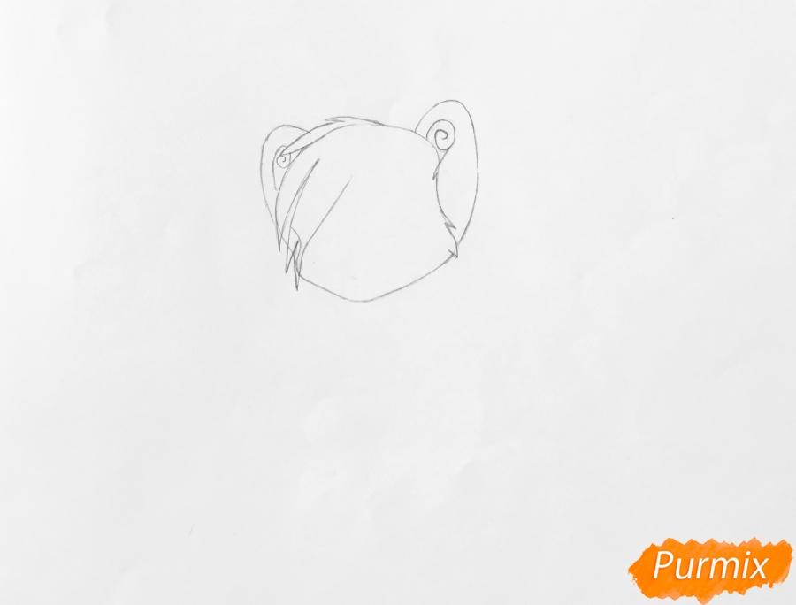 Рисуем и раскрасить бело синего аниме тигренка - фото 2