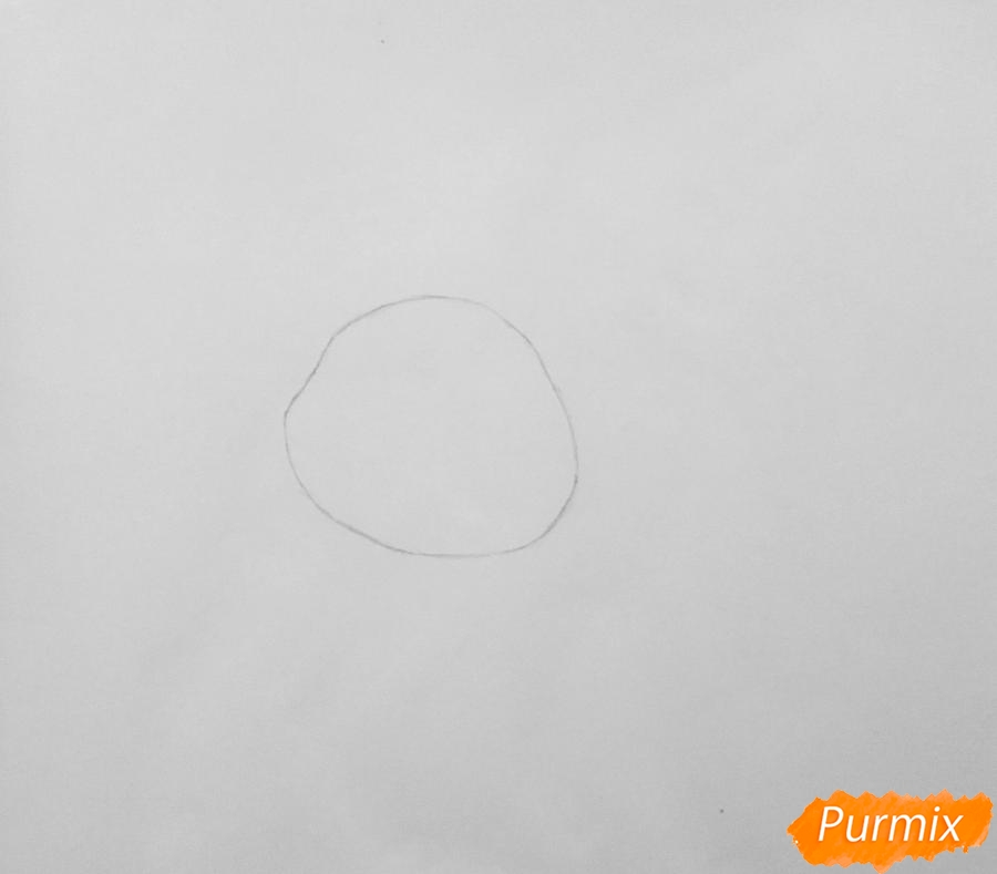 Рисуем белую кошку покемона - шаг 1