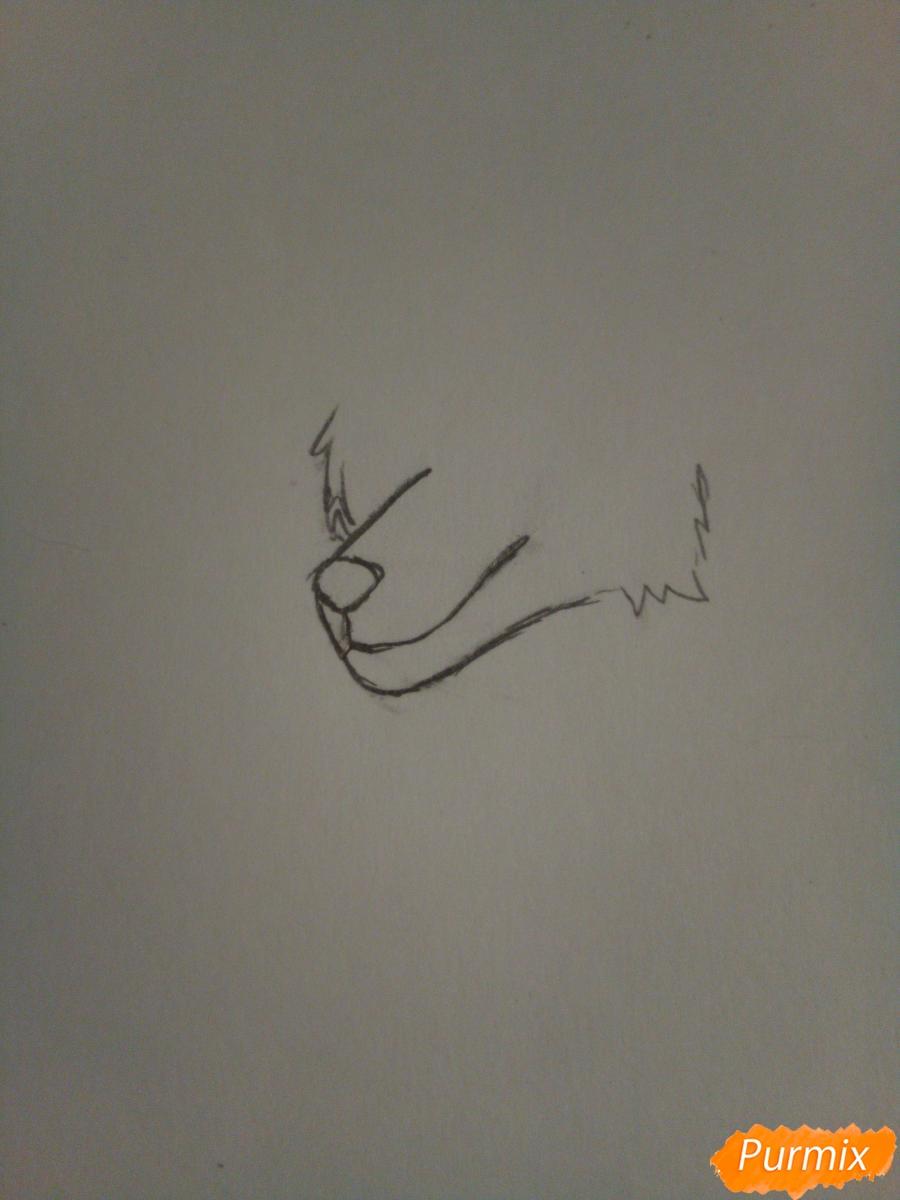 Рисуем крылатого волка в стиле аниме - шаг 1