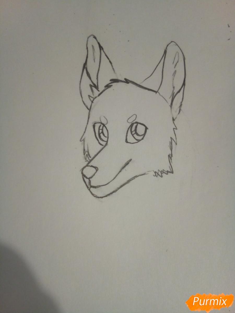 Рисуем крылатого волка в стиле аниме - шаг 2