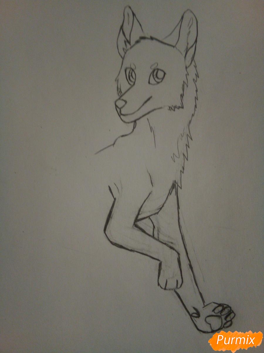 Рисуем крылатого волка в стиле аниме - шаг 3