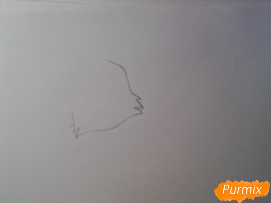 Рисуем милую аниме кошку - шаг 1