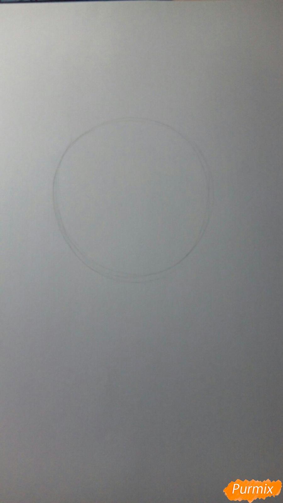 Рисуем портерт Сиро по шагам - фото 1