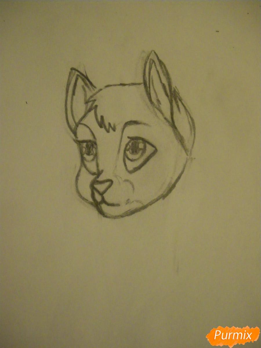 Рисуем серую аниме кошку - шаг 4