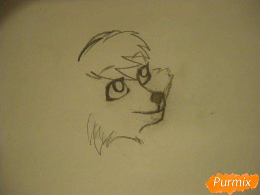 Рисуем серую аниме волчицу - шаг 2