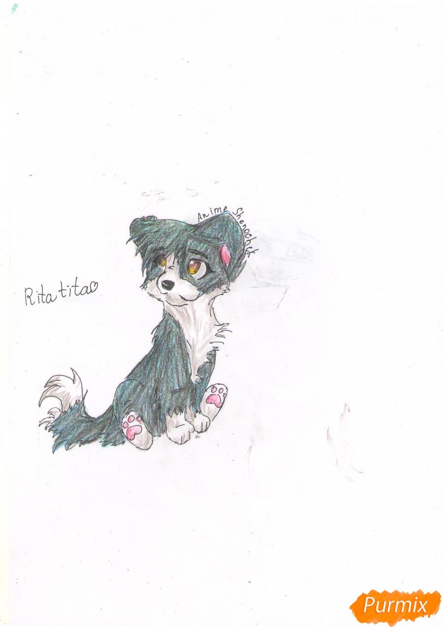 Рисуем щенка в стиле аниме  для начинающих - фото 7