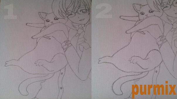 Как нарисовать аниме девушку с кошкой в руках поэтапно - шаг 8