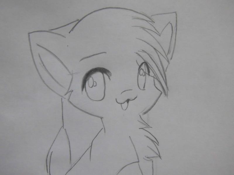 Рисуем аниме кошку - шаг 3