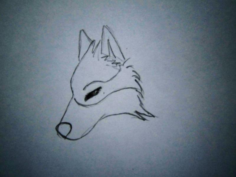 Рисуем аниме волка - шаг 1
