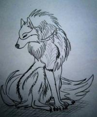 аниме волка карандашом