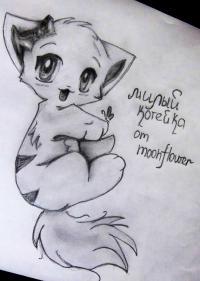 Фото аниме котенка карандашом