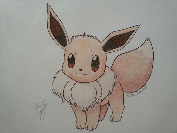 Как нарисовать милого покемона Иви карандашом поэтапно