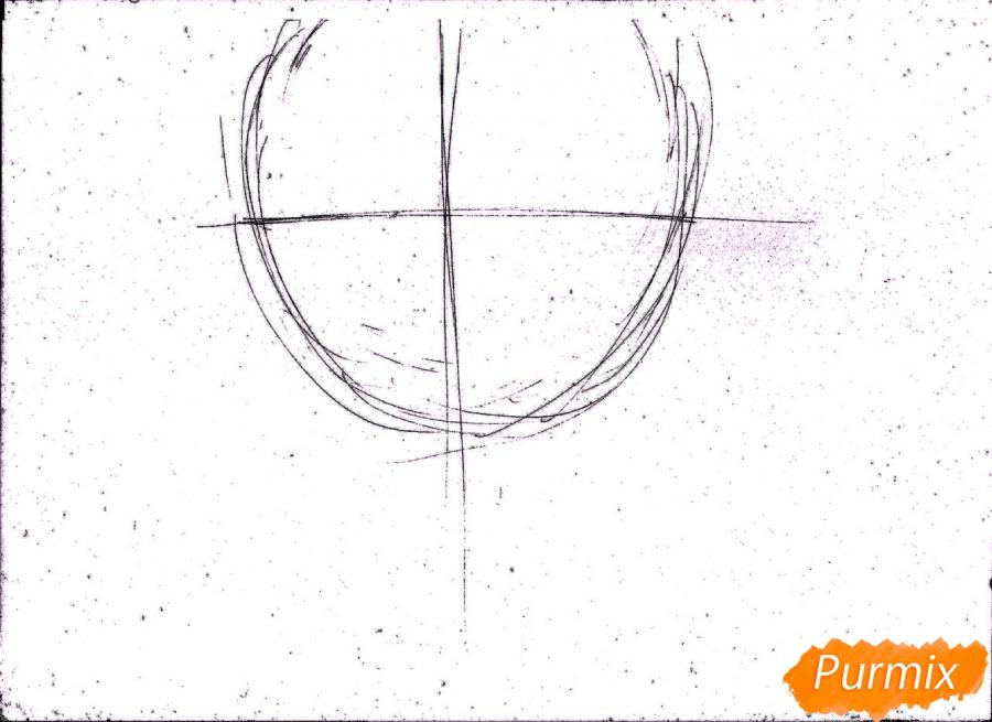Рисуем портрет Ророноа Зоро из One Piece пошагово - шаг 1