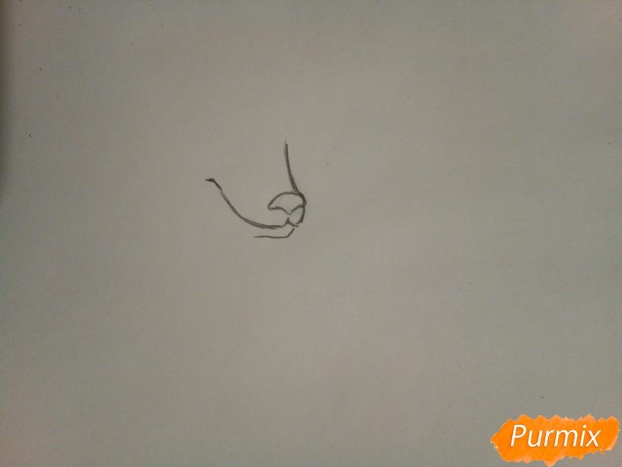 Рисуем ледяную волчицу в стиле аниме - шаг 1