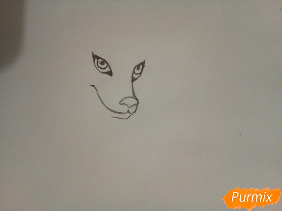 Рисуем ледяную волчицу в стиле аниме - шаг 2