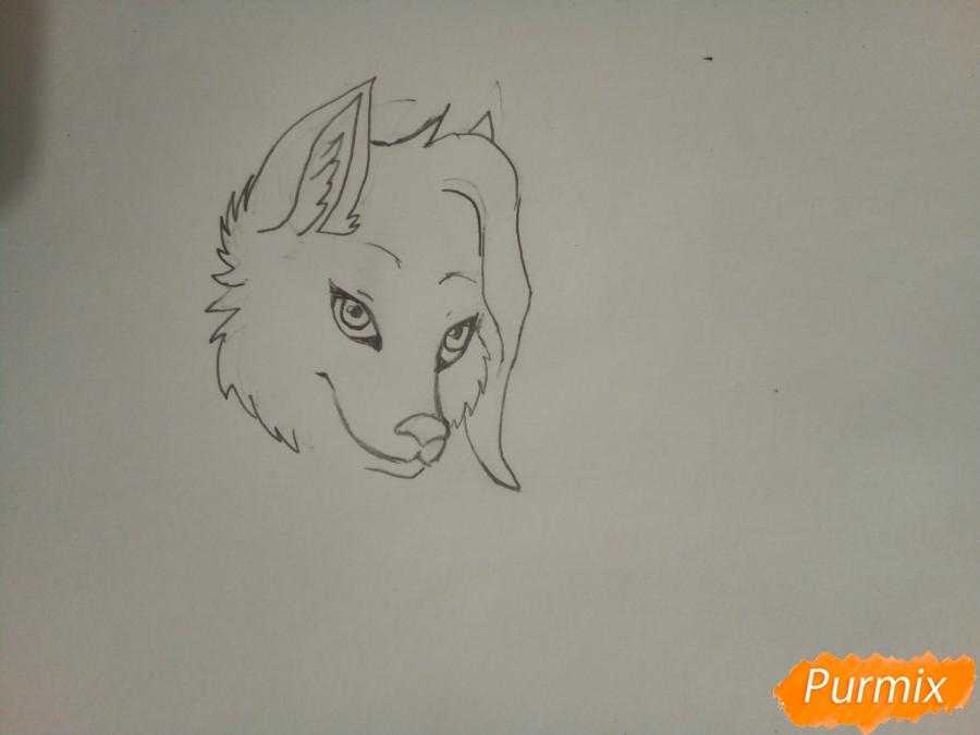 Рисуем ледяную волчицу в стиле аниме - шаг 3