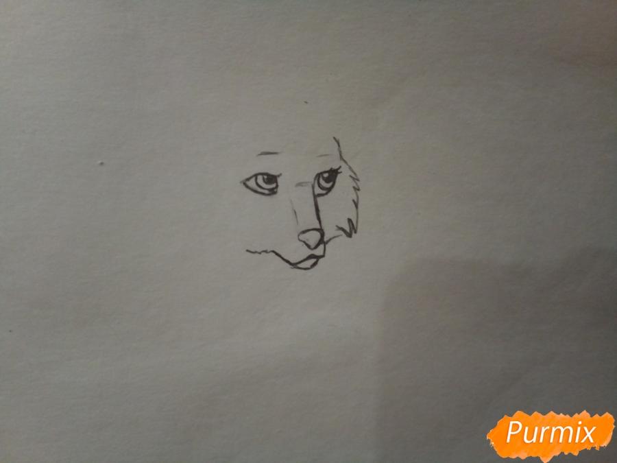 Рисуем милую розовую аниме волчицу - шаг 1