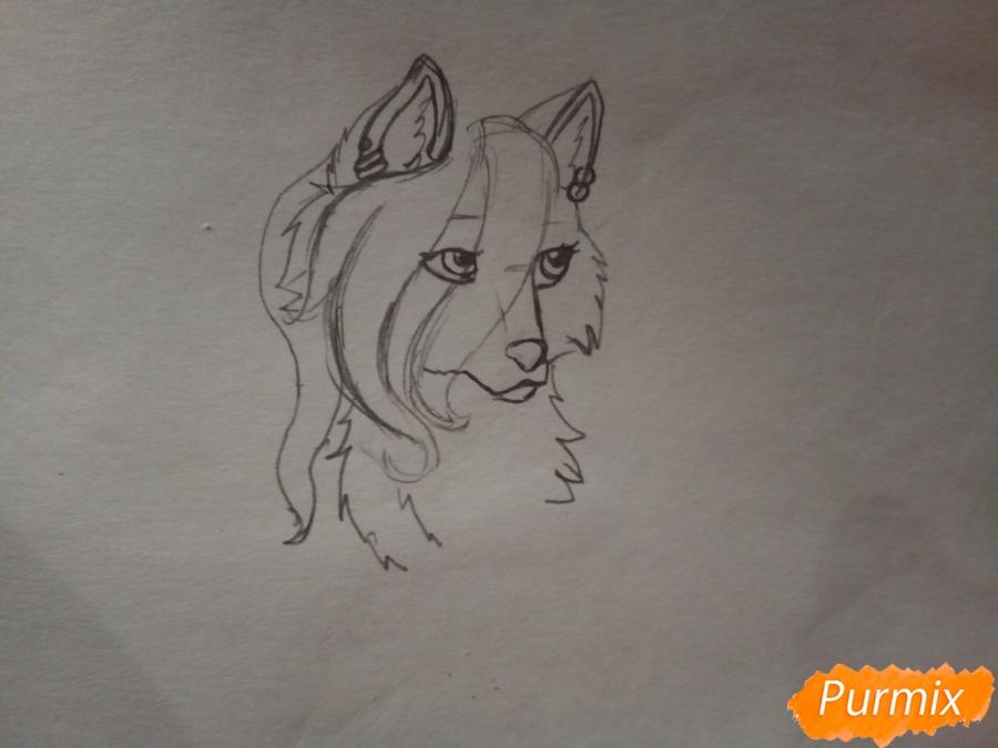 Рисуем милую розовую аниме волчицу - шаг 2