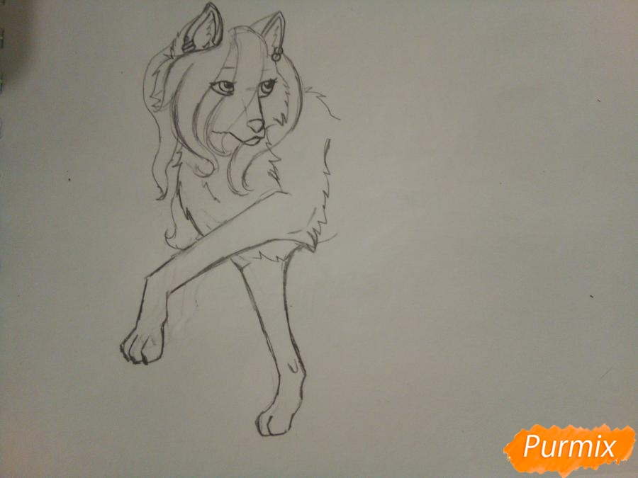 Рисуем милую розовую аниме волчицу - шаг 3
