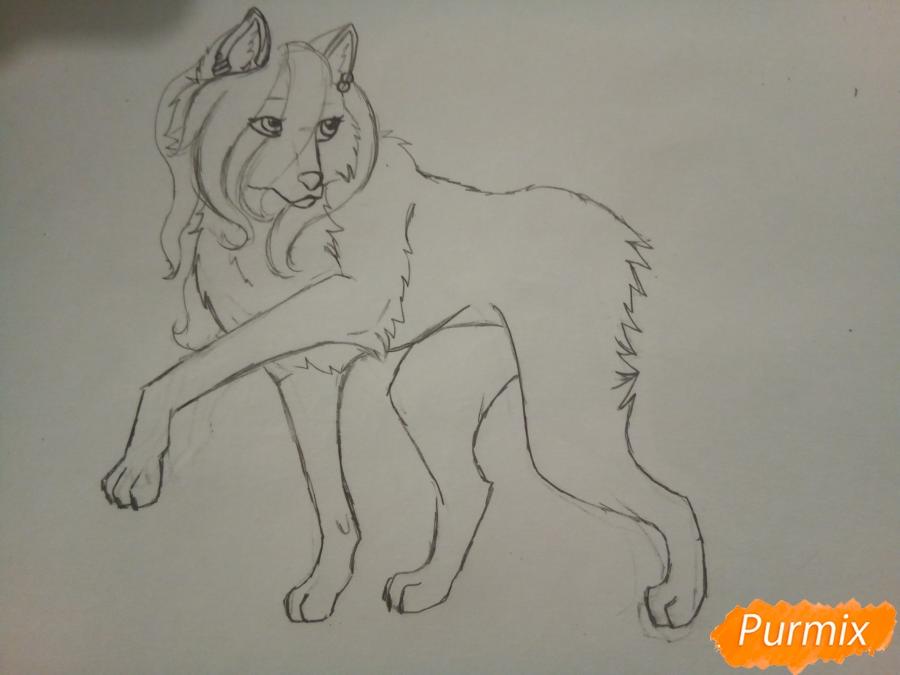 Рисуем милую розовую аниме волчицу - шаг 4